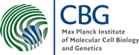 Logo Max Planck Institute of Molecular Cell Biology and Genetics (MPI-CBG)